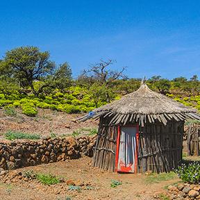 Ursprüngliche Hütte nahe dem Tageswald herein in Dschibuti