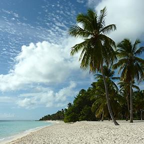 Ein blauer Himmel mit vereinzelten Wolken. Links das Meer, rechts der Strand mit Palmen.