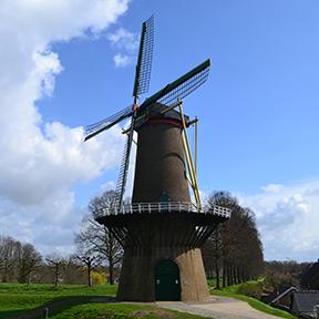 Eine niederländische Windmühle in einem Park vor einem Dorf.