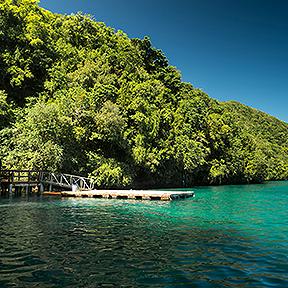 Rock Islands und Quallen Lake