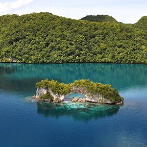 Ein Bild einer kleinen Insel in Palau