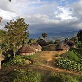Bild eines Traditionelles Dorfes in Papua Neuguinea