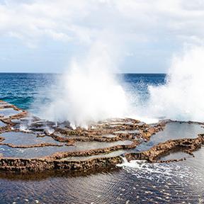 Bild eines Geysir an der Küste der Insel Tongatapu island