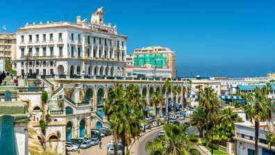 Die Handelskammer, ein weißes Gebäude mit einer Straße davor und Palmen auf beiden Seiten - Algerien